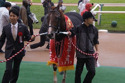 富士Sはエアスピネルが不良馬場をものともせず完勝で重賞3勝目を飾る_b0015386_22281378.jpg
