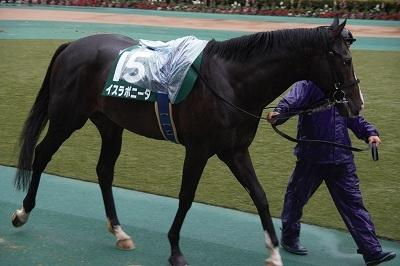 富士Sはエアスピネルが不良馬場をものともせず完勝で重賞3勝目を飾る_b0015386_22284273.jpg