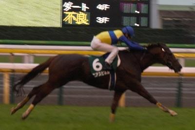 富士Sはエアスピネルが不良馬場をものともせず完勝で重賞3勝目を飾る_b0015386_22285153.jpg