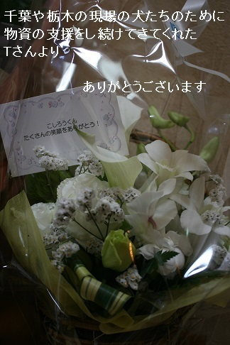 温かいお気持ちをありがとうございました_f0242002_13365635.jpg