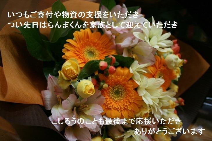 温かいお気持ちをありがとうございました_f0242002_13371482.jpg