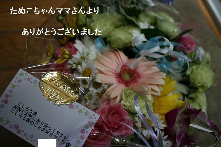 温かいお気持ちをありがとうございました_f0242002_13372933.jpg