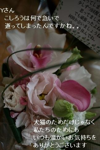 温かいお気持ちをありがとうございました_f0242002_13373749.jpg