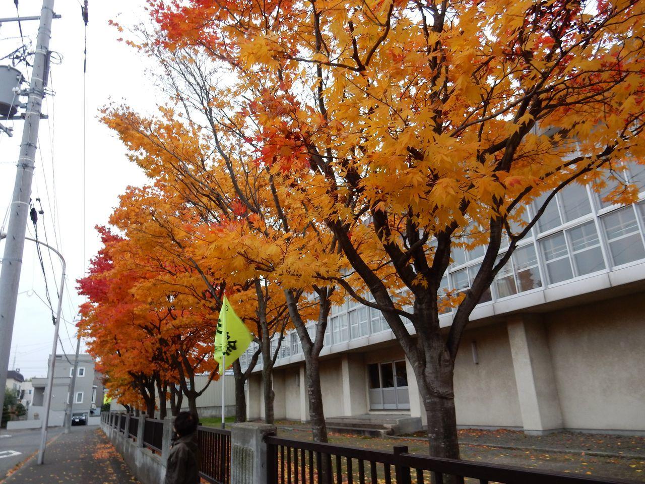 札幌へ_c0025115_22135158.jpg