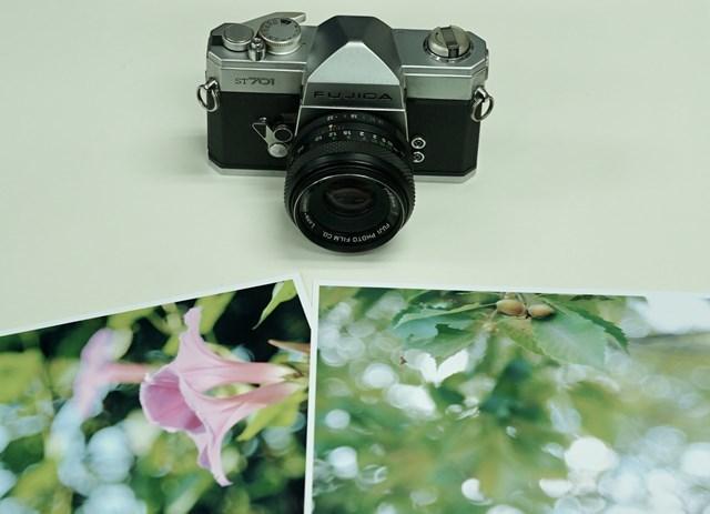 第396回 手作りカメラ 会報_d0138130_01152266.jpg