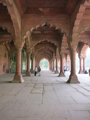 インド(デリー)とネパールの旅\'17_e0097130_22515771.jpg