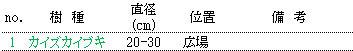 d0361999_10591219.jpg