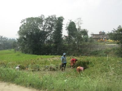 インド(デリー)とネパールの旅\'17_e0097130_17073618.jpg