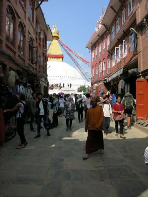 インド(デリー)とネパールの旅\'17_e0097130_17150847.jpg