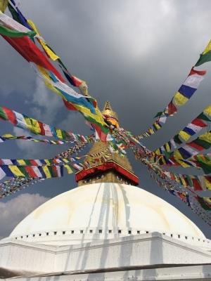 インド(デリー)とネパールの旅\'17_e0097130_17160642.jpg
