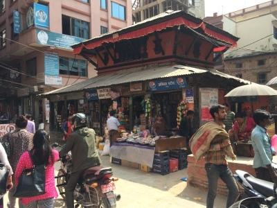 インド(デリー)とネパールの旅\'17_e0097130_17263719.jpg