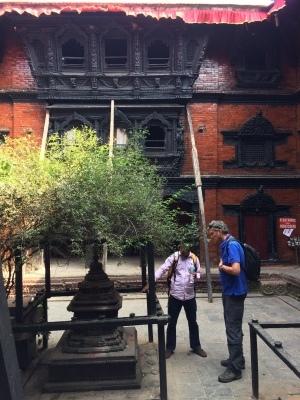 インド(デリー)とネパールの旅\'17_e0097130_17302204.jpg