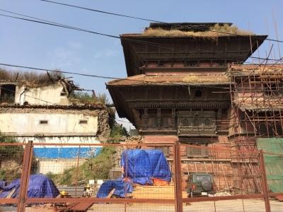 インド(デリー)とネパールの旅\'17_e0097130_17343110.jpg