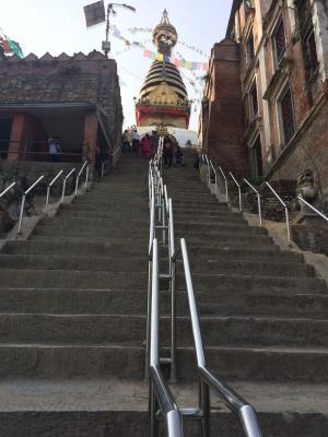 インド(デリー)とネパールの旅\'17_e0097130_17433684.jpg