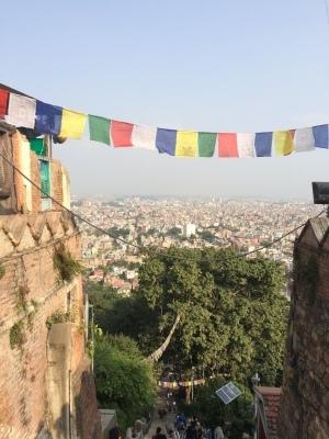 インド(デリー)とネパールの旅\'17_e0097130_17434912.jpg