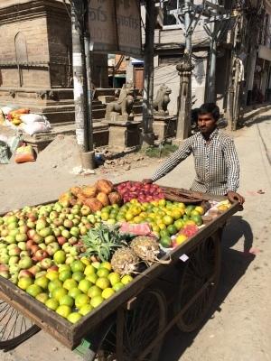 インド(デリー)とネパールの旅\'17_e0097130_17582783.jpg
