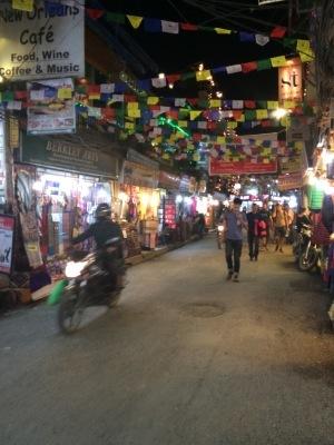 インド(デリー)とネパールの旅\'17_e0097130_18012759.jpg