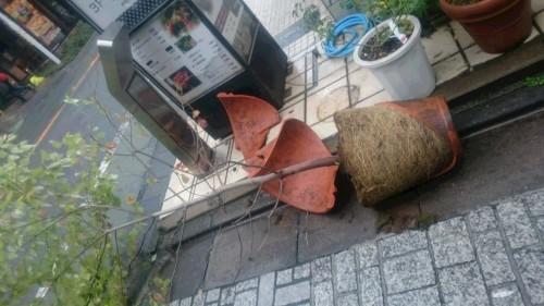 超大型台風通過_d0155439_11544275.jpg