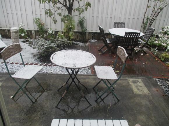 三回忌が終わった&天気予報通リの雪・・・・_a0279743_10235058.jpg