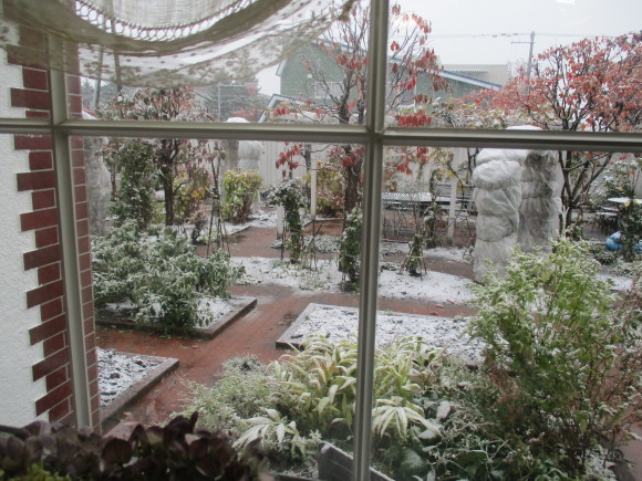 三回忌が終わった&天気予報通リの雪・・・・_a0279743_10240665.jpg