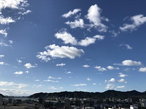 秋の嵐 🌀_e0288544_12152375.jpg