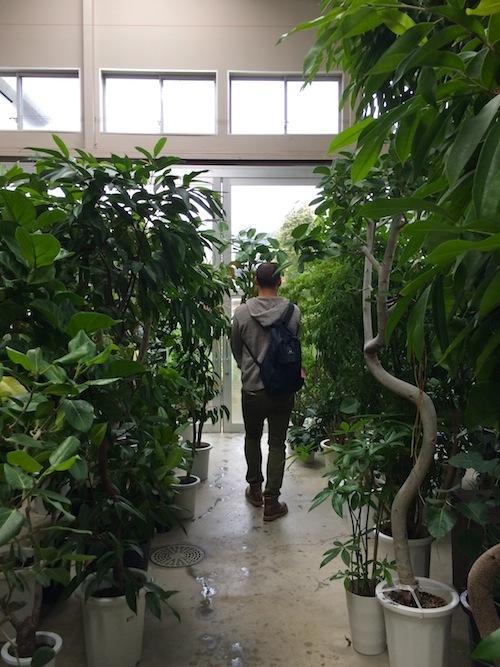 FiELD植物愛好会_f0324766_13554648.jpg