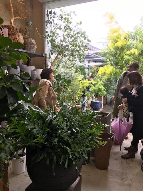 FiELD植物愛好会_f0324766_13554743.jpg