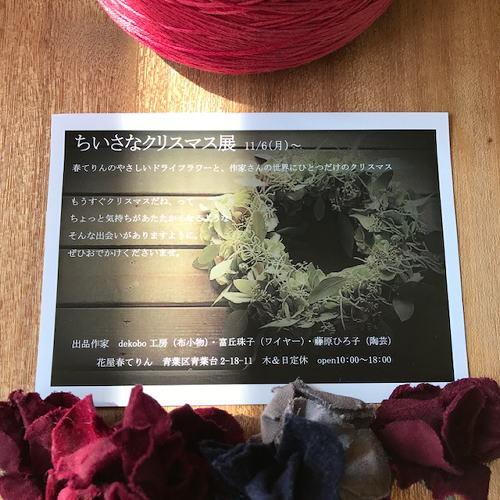 お花屋さんのちいさなクリスマス展_d0091671_15405073.jpg