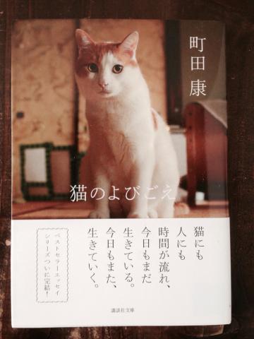『猫のよびごえ』町田康著_e0055098_11370183.jpg