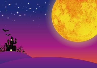 色づく日々 ~ 霜降の頃'17_d0337299_23344053.jpg