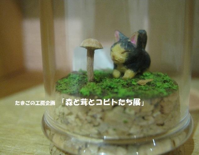 たまごの工房企画「 森と茸とコビトたち展 」 その6_e0134502_16294325.jpg