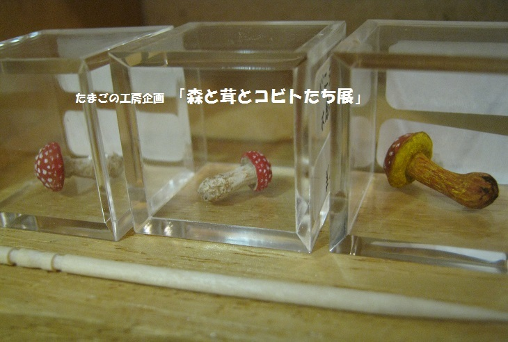 たまごの工房企画「 森と茸とコビトたち展 」 その6_e0134502_16302515.jpg