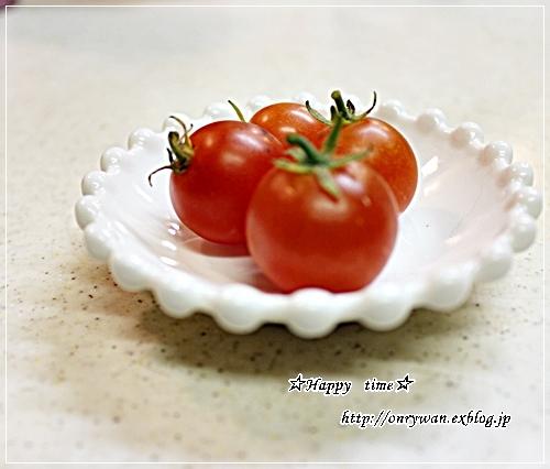 バゲットサンド弁当とうちの子トマト☆やっと収穫♪_f0348032_18095982.jpg