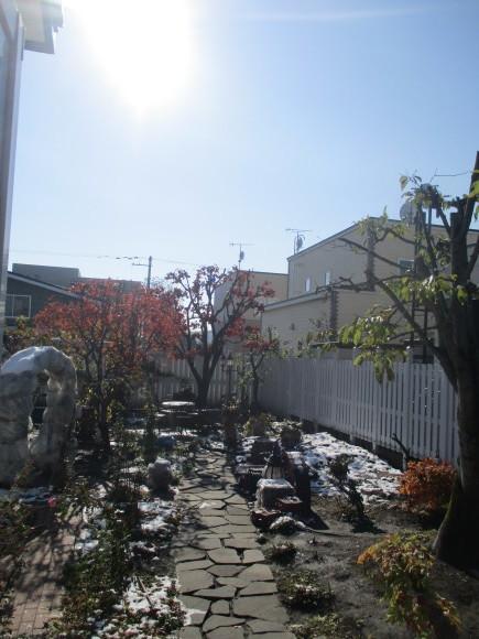昨日の大雪にはビックリポンだった!_a0279743_10092061.jpg