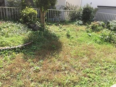 今日は草刈りデー。_f0372998_21540901.jpg