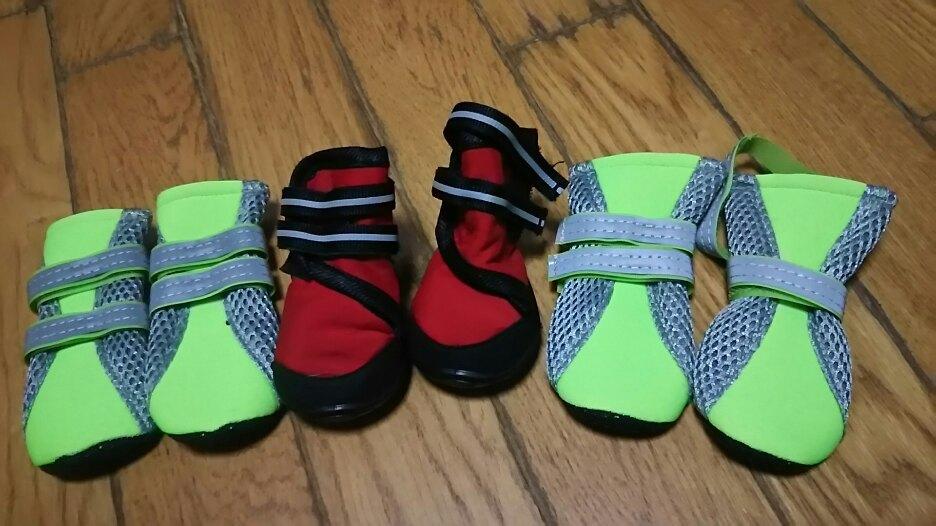 靴とハーネス_f0242002_20363350.jpg
