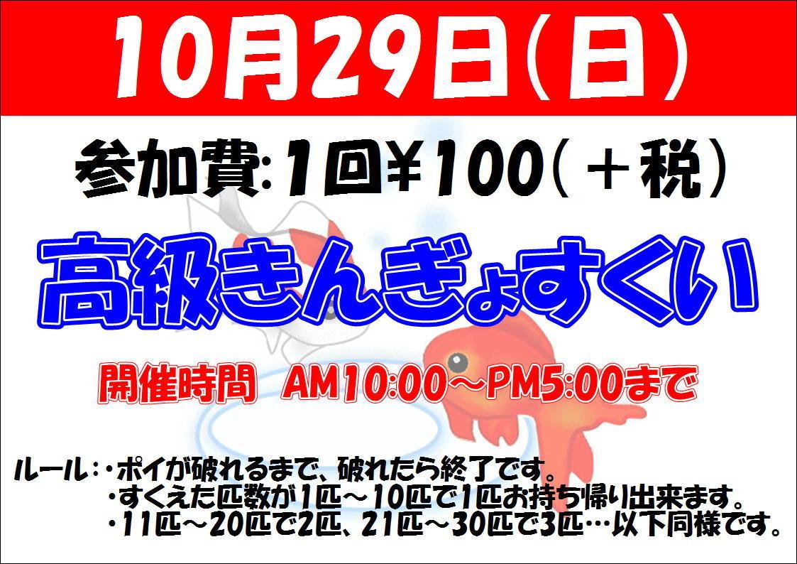 171026 熱帯魚・金魚・水草_f0189122_13023534.jpg