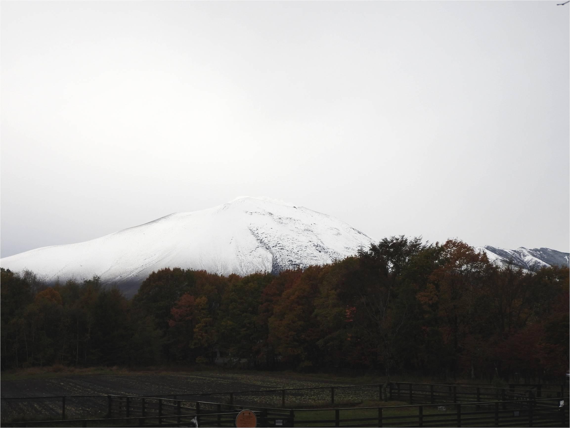 浅間山、上から下まで真っ白です_b0174425_17391479.jpg