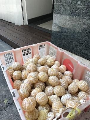 すっきり秋晴れの長洲島でのんびりと過ごす☆Cheung Chau Island in Hong Kong_f0371533_12485698.jpg