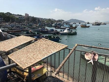 すっきり秋晴れの長洲島でのんびりと過ごす☆Cheung Chau Island in Hong Kong_f0371533_12491327.jpg