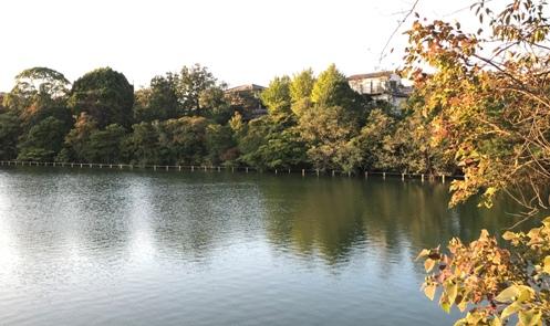美和台付近を歩いてみました!_b0214473_1821444.jpg