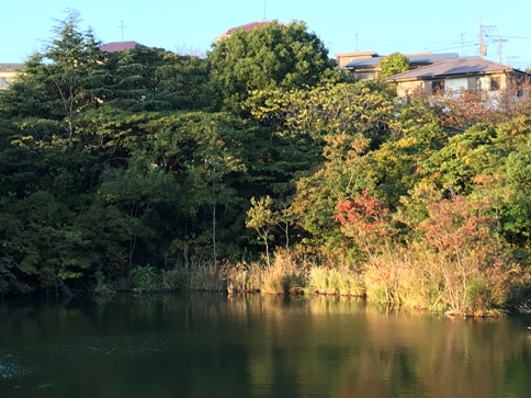 美和台付近を歩いてみました!_b0214473_18223499.jpg