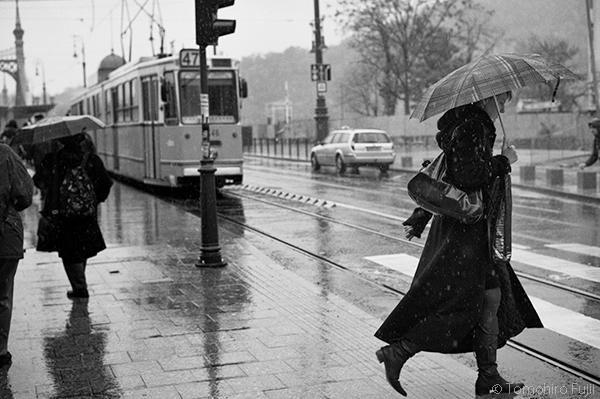 ハンガリー、ブダペストにて_c0030685_12301556.jpg