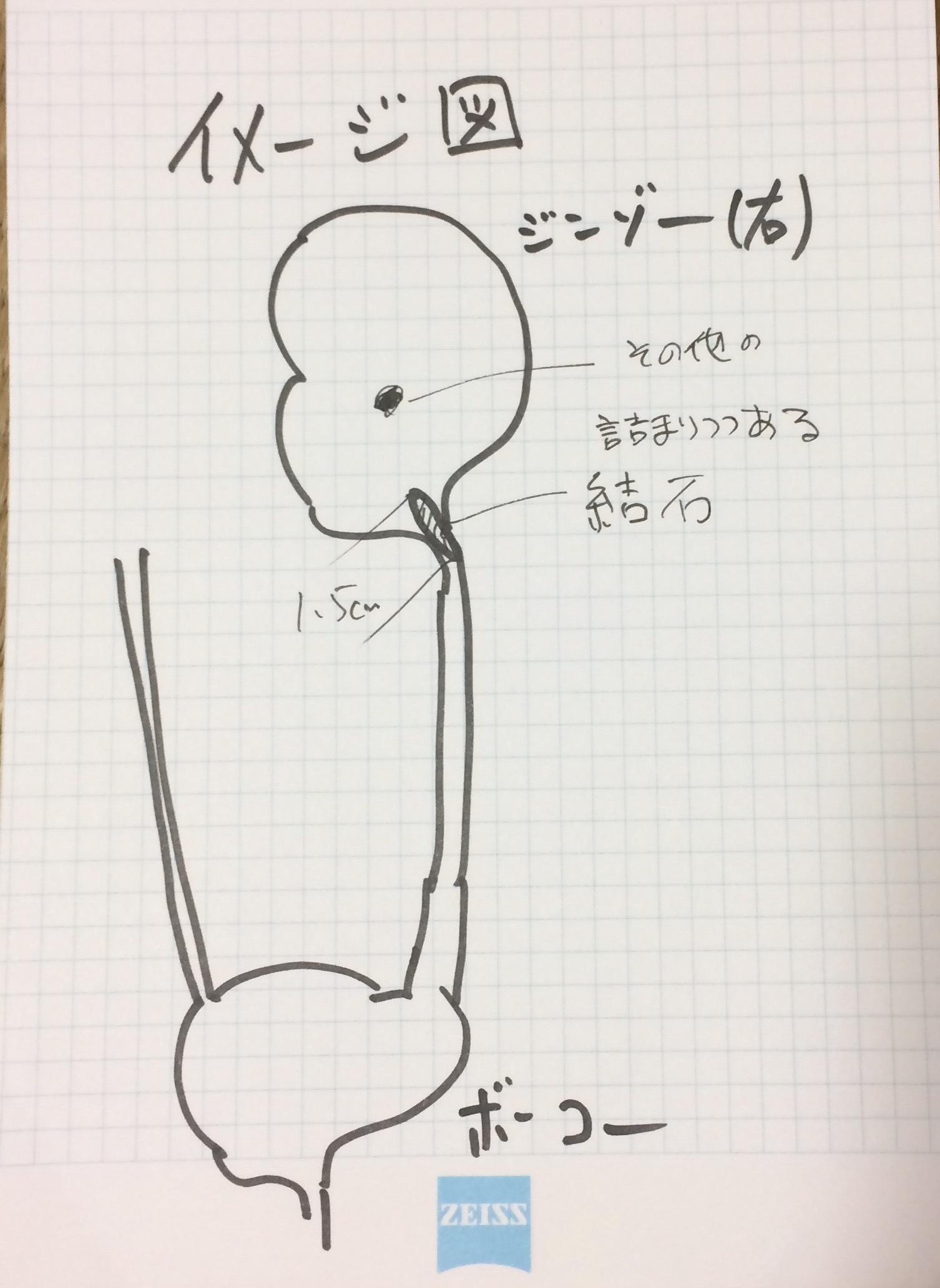 b0012311_08332535.jpg