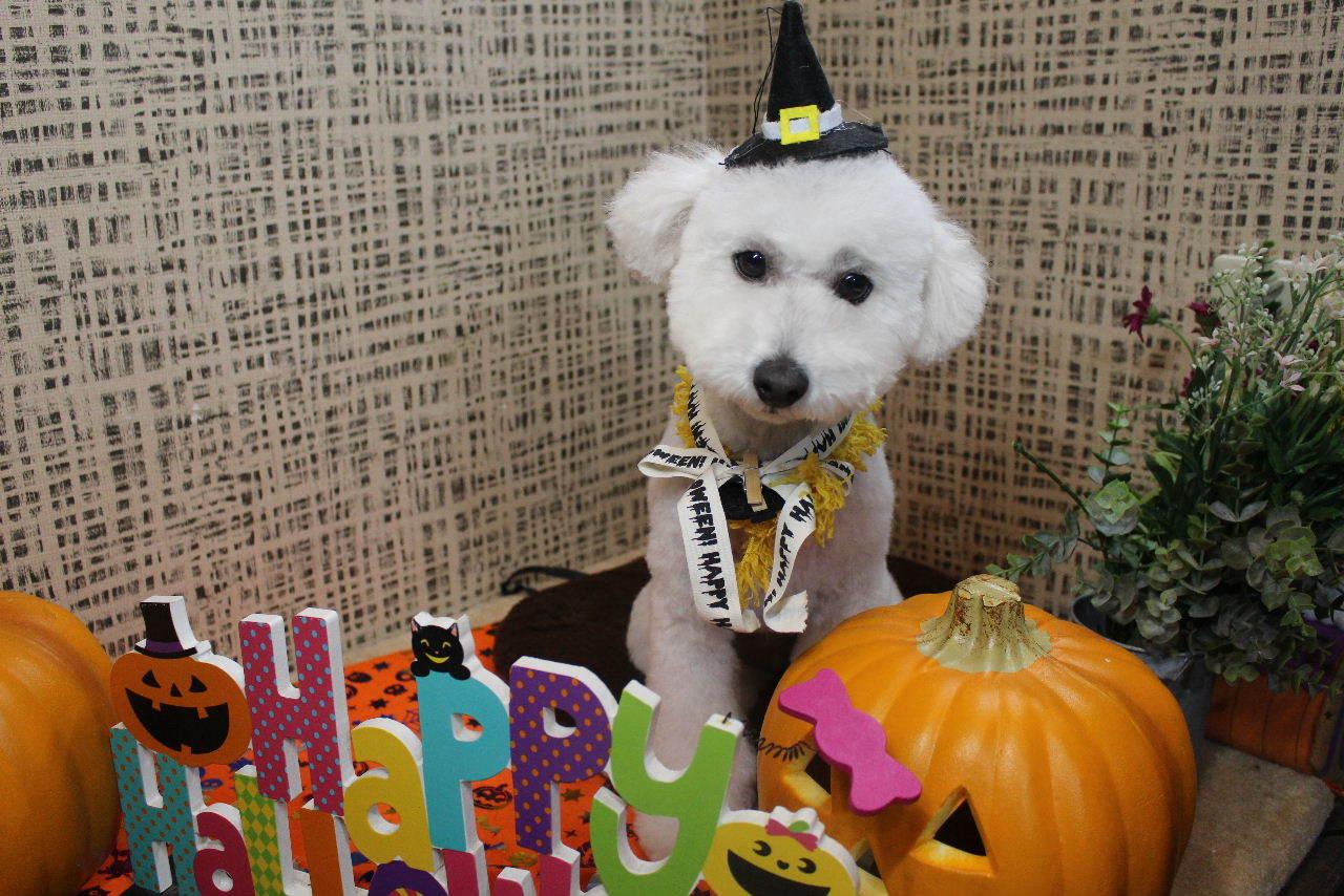 10月22日ご来店のお客様です!!_b0130018_21013124.jpg
