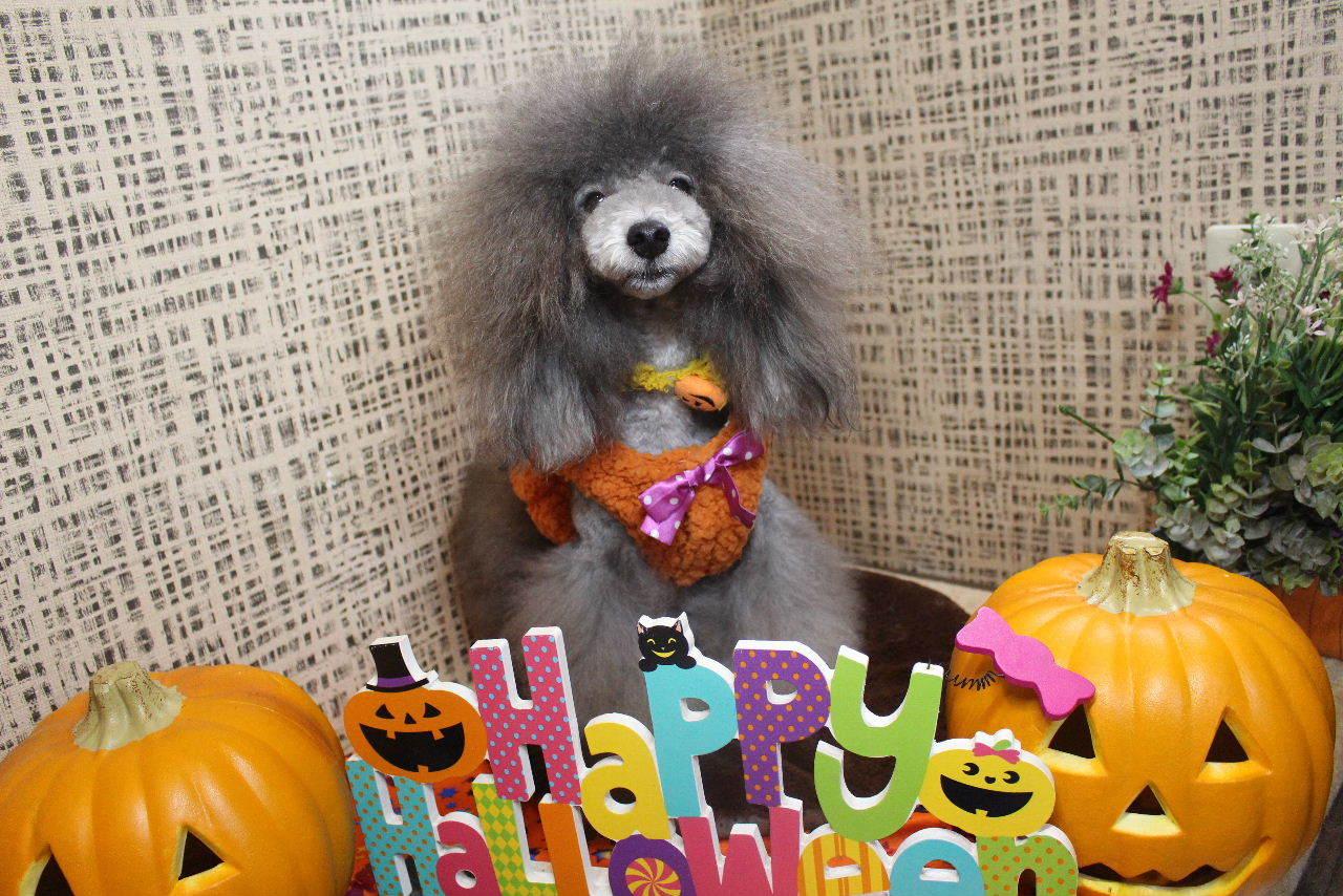 10月22日ご来店のお客様です!!_b0130018_21131201.jpg