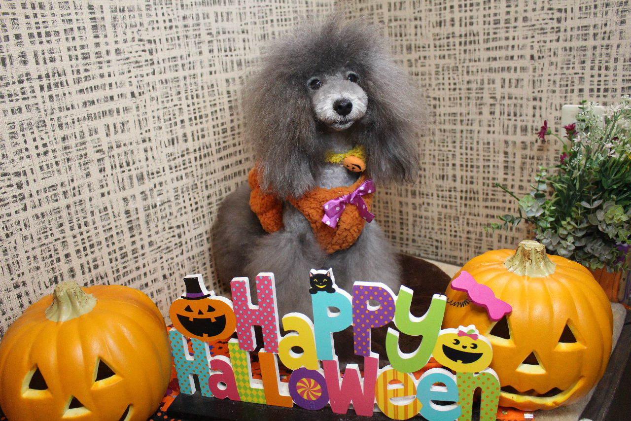 10月22日ご来店のお客様です!!_b0130018_21132045.jpg