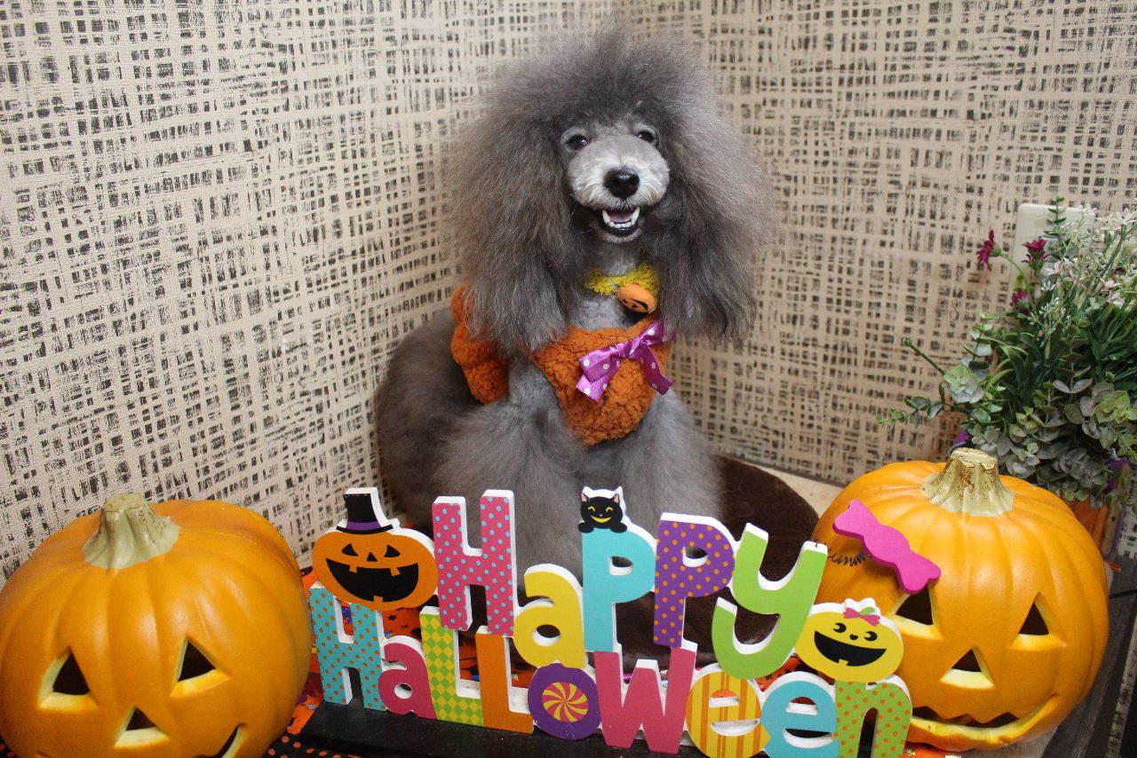 10月22日ご来店のお客様です!!_b0130018_21132871.jpg