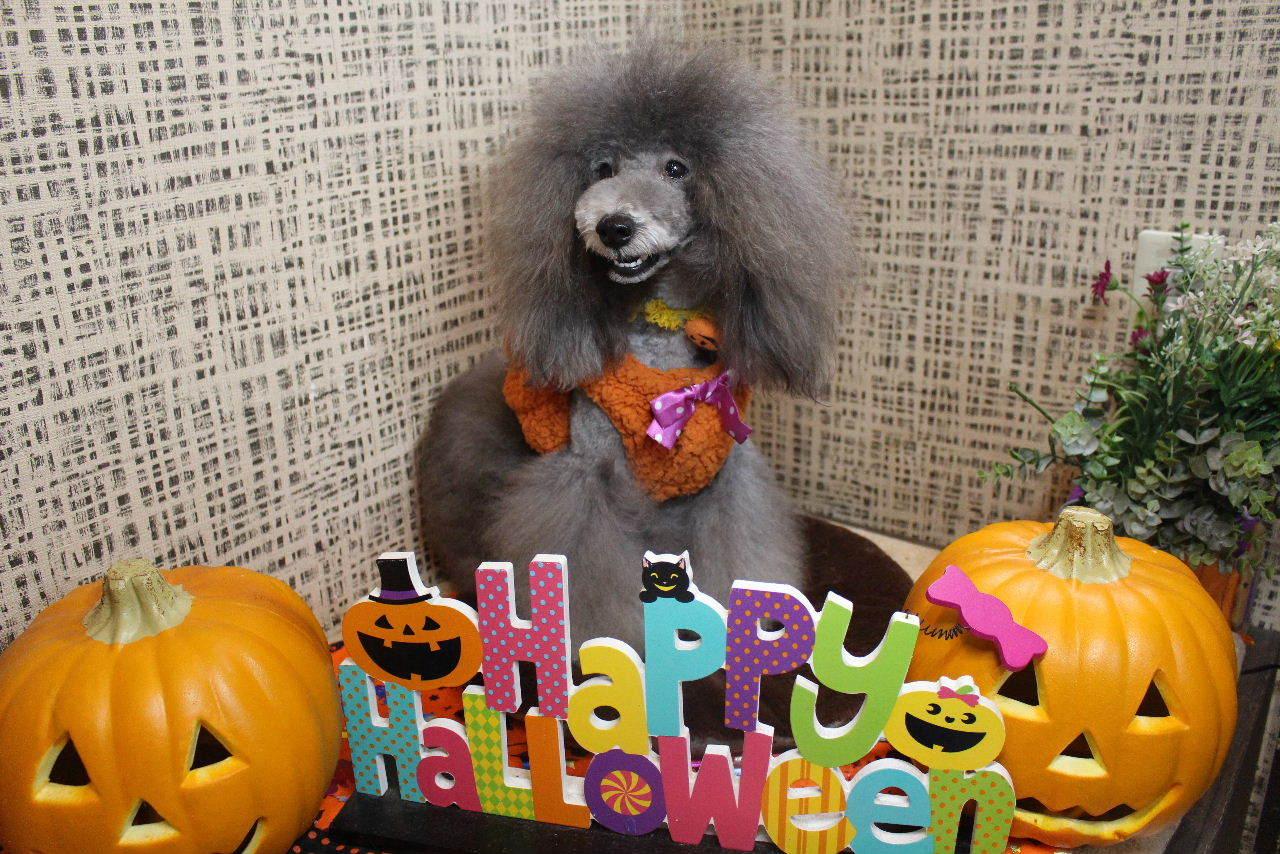 10月22日ご来店のお客様です!!_b0130018_21133687.jpg