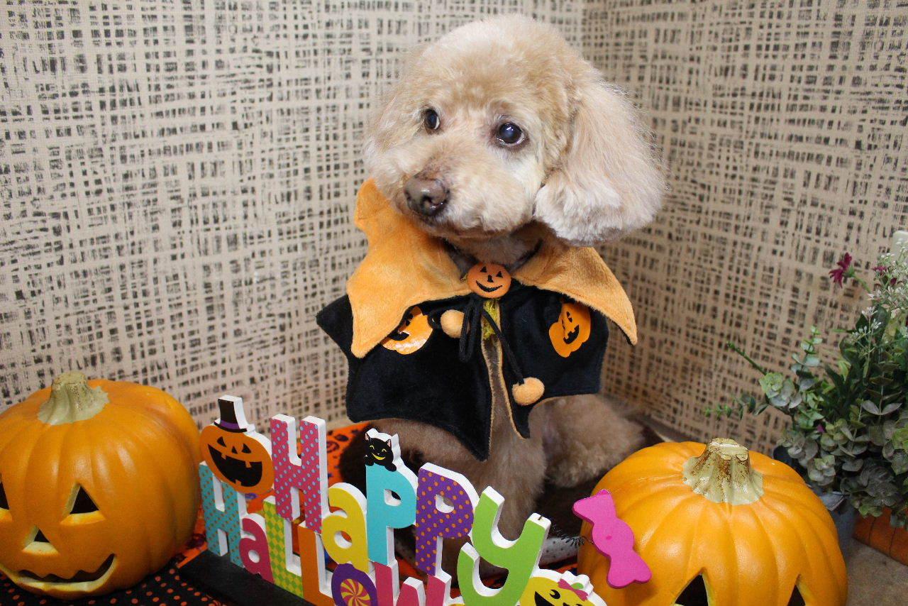 10月22日ご来店のお客様です!!_b0130018_21181220.jpg